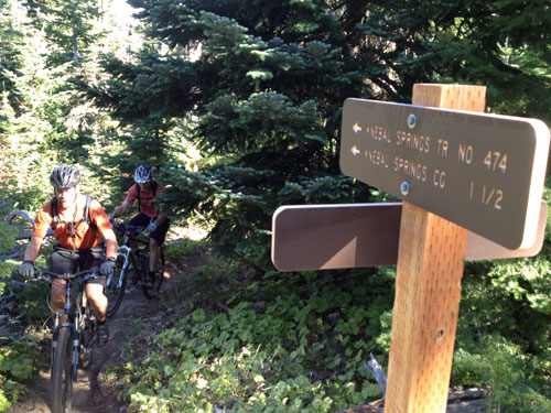 Sweet new trail signs!